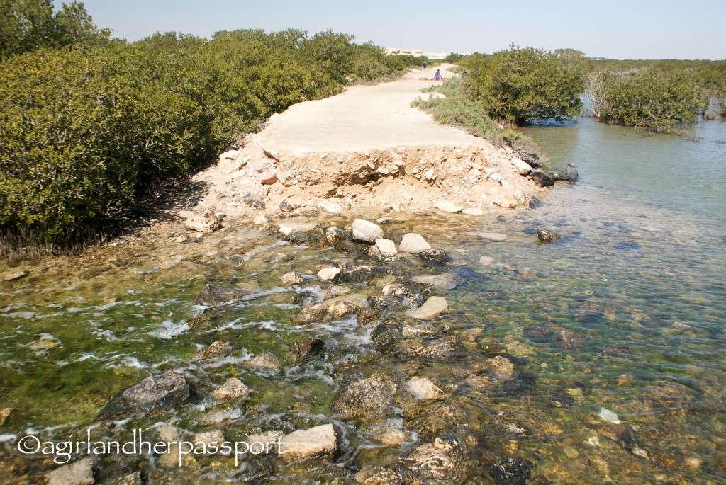 Purple Island Qatar