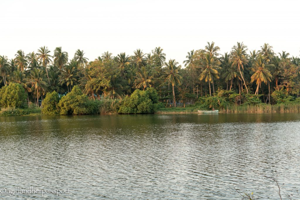 Waterland in Negombo, Sri Lanka