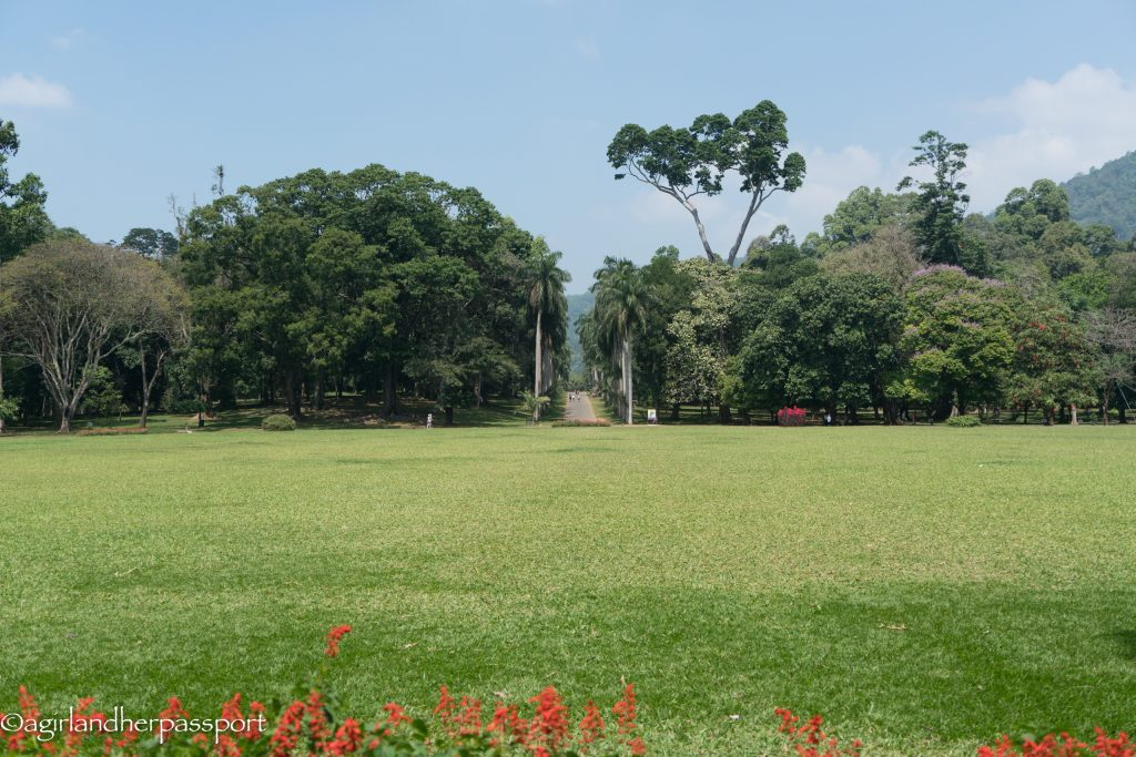 Royal Botanic Gardens Kandy