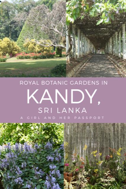 Royal Botanic Gardens in Kandy,. Sri Lanka
