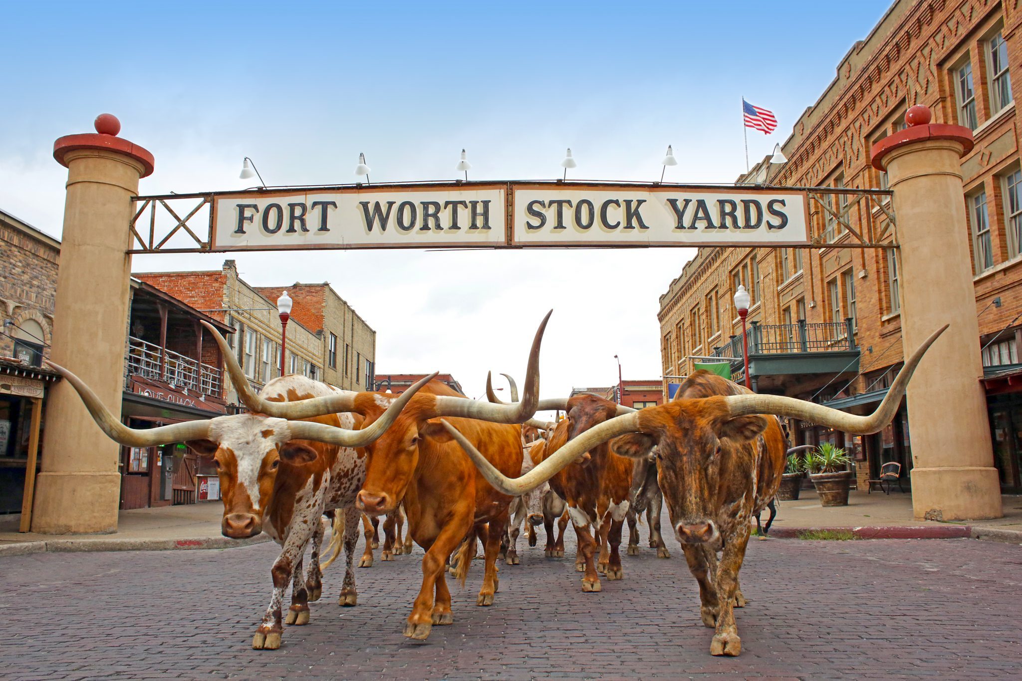 Things to do in Fort Worth